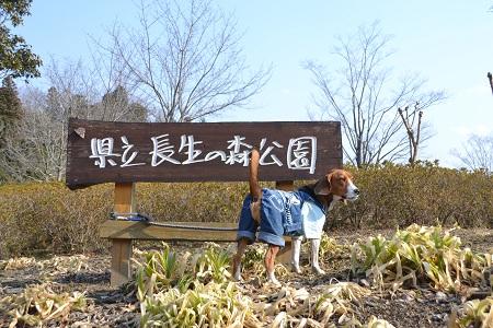 20120201秋元牧場20