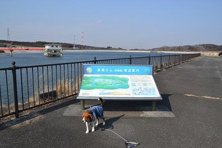 20120201秋元牧場19