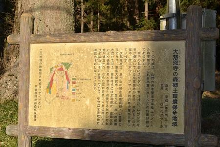 20120204佐原NIKON 110