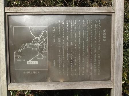 20120210勝浦20