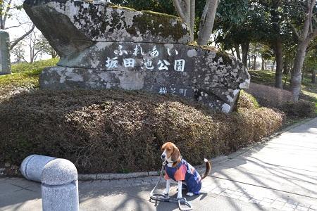20120312坂田城址 002