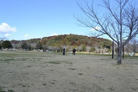 20120312坂田城址 036