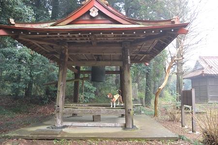 20120318竜腹寺11
