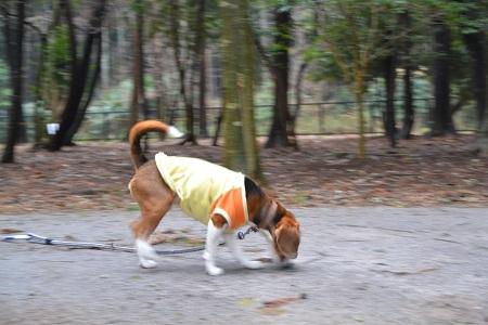 20120318平岡自然公園05