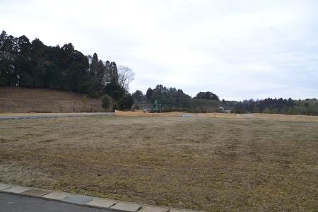 20120318平岡自然公園10