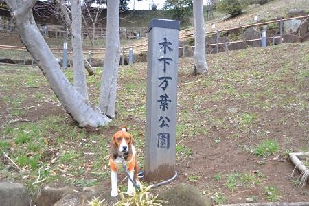 20120318木下万葉公園04