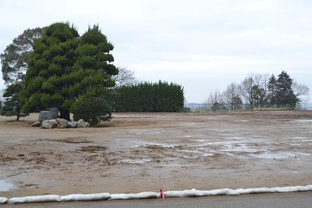 20120318木下万葉公園12