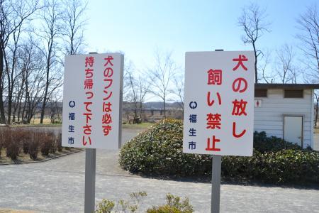 多摩川中央公園12
