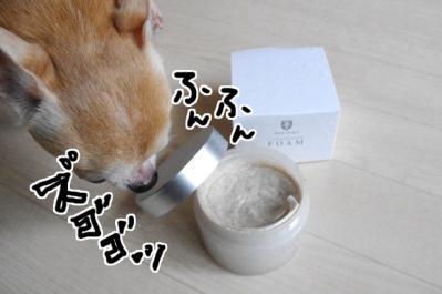 IMGP0023_3.jpg
