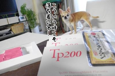IMGP7646-2.jpg