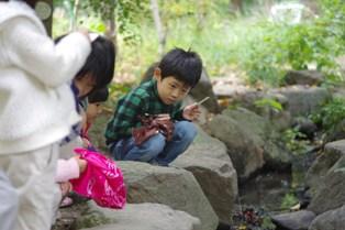 2011 10 30_nature_0366リサイズ