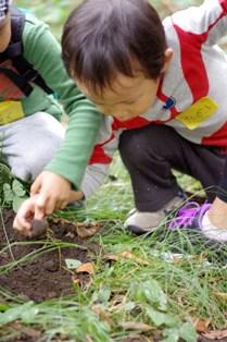 2011 10 30_nature_0416リサイズ