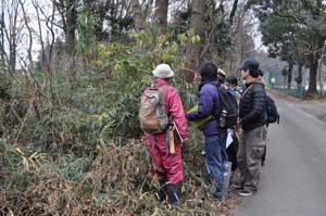 20111222林縁の植生調査風景1