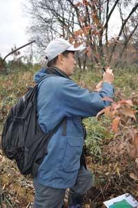 20111222林縁の植生調査風景3