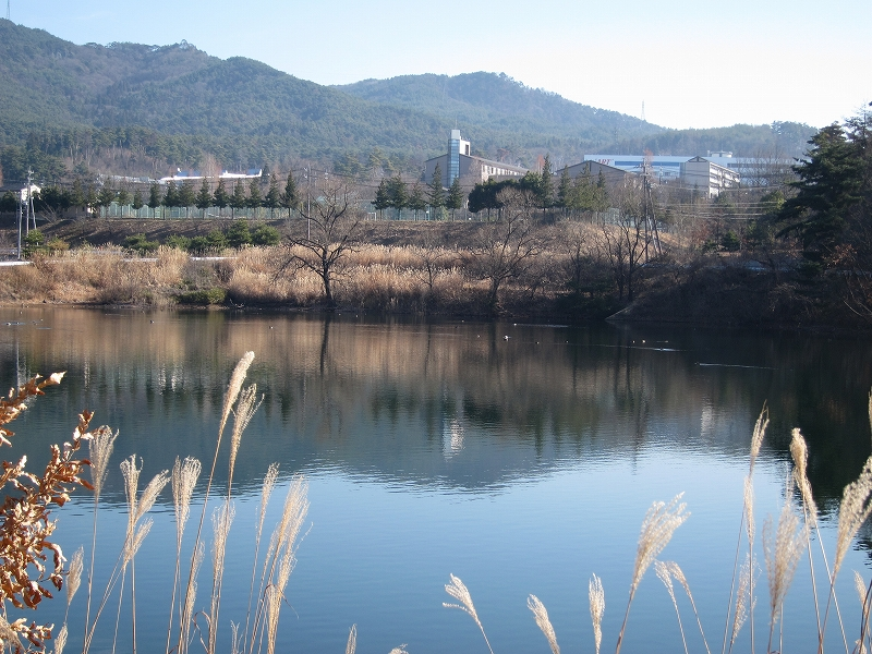 浅間池風景