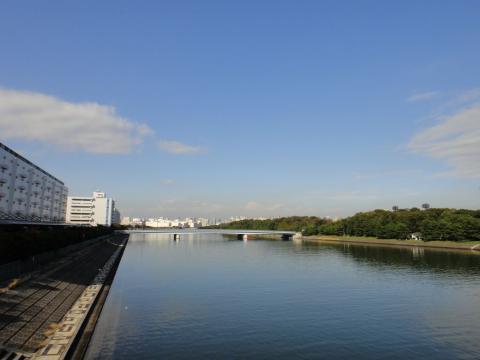 20111120-01.jpg