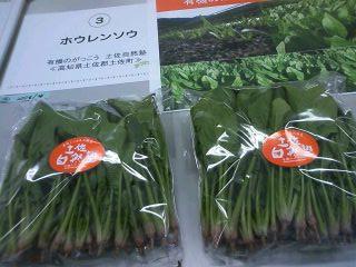 2013野菜ソムリエサミット③