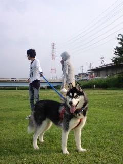 11-07-24川原にてラピード