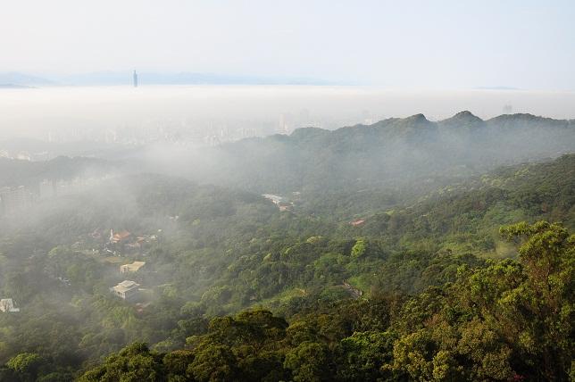 霧のベール(3)