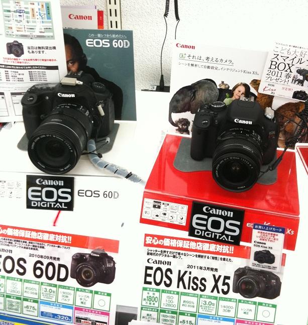 60DX5EOS01.jpg