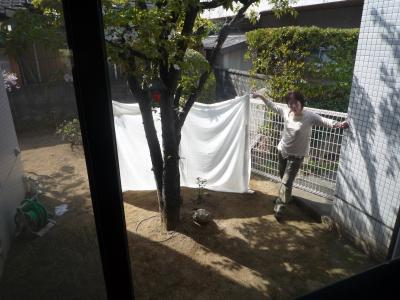 小野様お庭