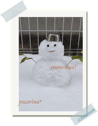 snow1229
