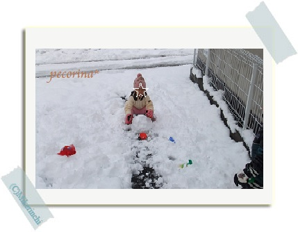 snow122903