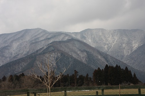 2010-02-19082.jpg