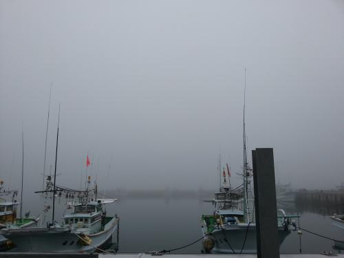 614 霧にむせぶ港