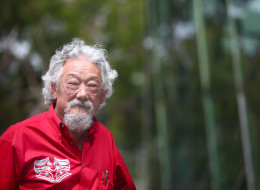 n-DAVID-SUZUKI-large.jpg