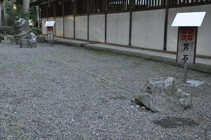 sasaki (5)
