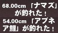 mabinogi_2014_09_19_030.jpg