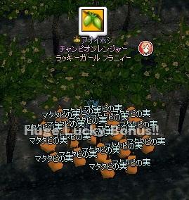 mabinogi_2014_11_11_003.jpg
