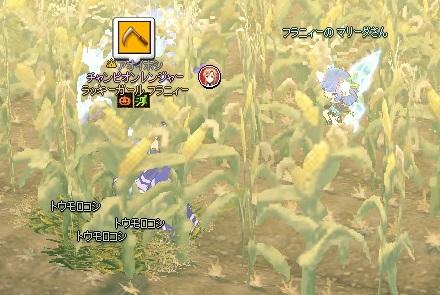 mabinogi_2014_11_12_010.jpg