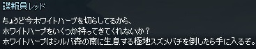 mabinogi_2014_11_16_011.jpg