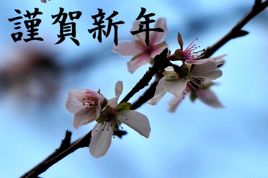 001_20120101211100.jpg