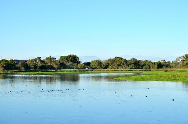 Lake Machado -01