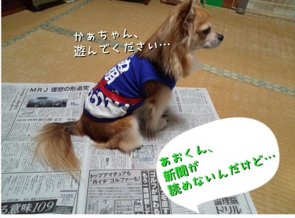 201410192304471c3.jpg