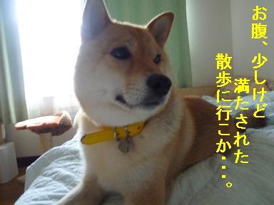 d85_20110902120846.jpg
