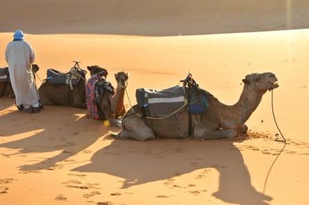 maroc4.jpg