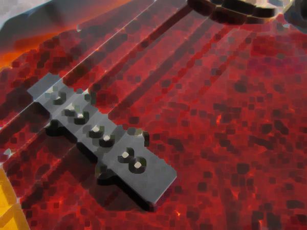 Bass_20130127001935.jpg
