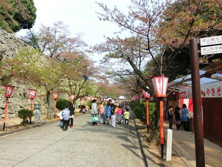 鶴山公園 (1)