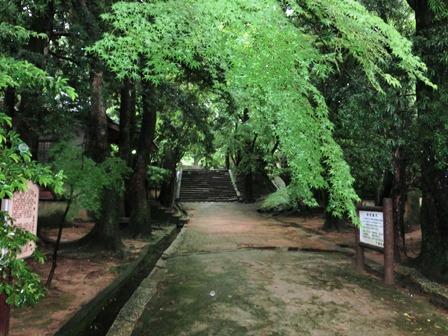 功山寺 (5)