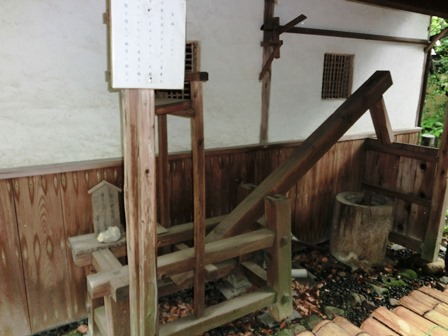 乃木神社 (16)