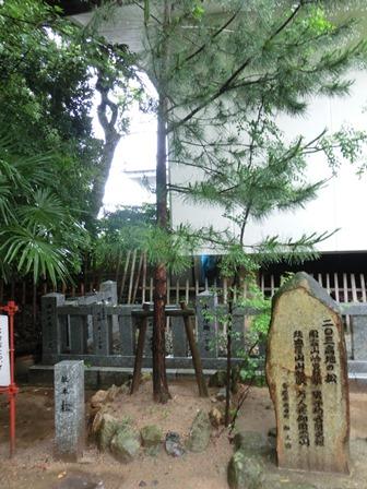 乃木神社 (18)