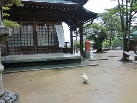 忌宮神社 (4)