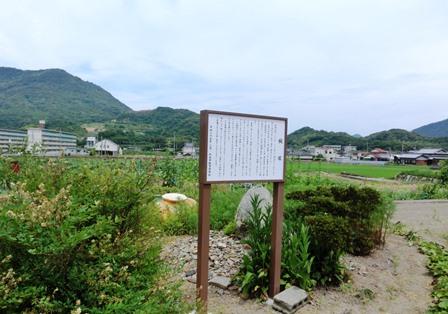 わん塚まで (8)
