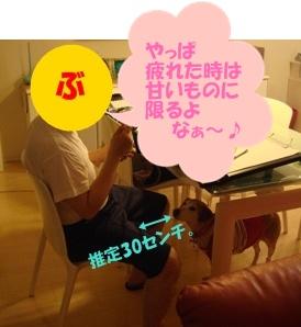 11_06_19_10_.jpg