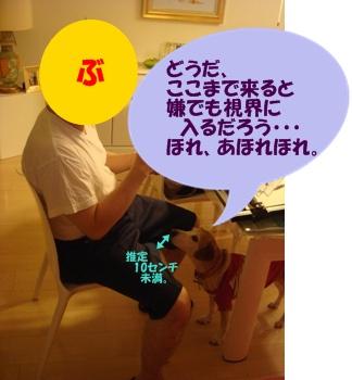 11_06_19_11_.jpg