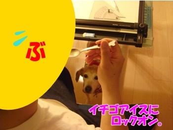 11_06_19_12_.jpg